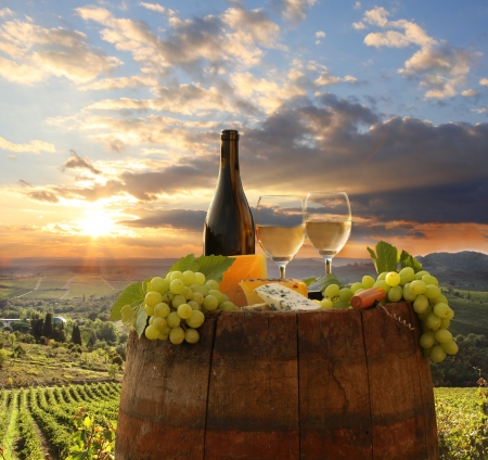 Photo pour White wine with barrel on vineyard in Chianti, Tuscany, Italy - image libre de droit
