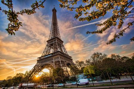 Photo pour Eiffel Tower with spring tree in Paris, France - image libre de droit