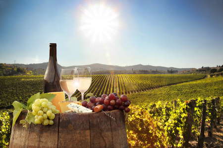 Photo pour White wine with barrel on famous vineyard in Chianti, Tuscany, Italy - image libre de droit