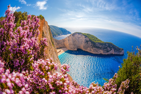 Photo pour Navagio beach with shipwreck and flowers against sunset, Zakynthos island, Greece - image libre de droit