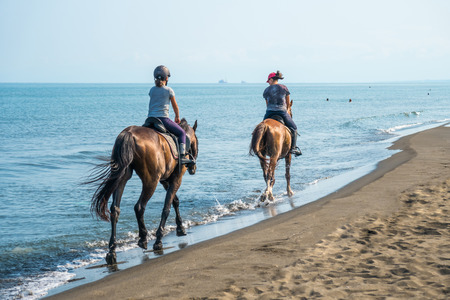 Photo pour Galloping on a horse of the sea at sunny day - image libre de droit
