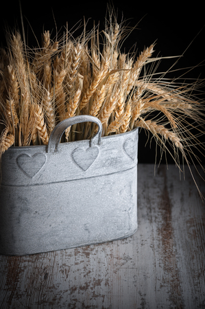 Foto de Decorative wheat field in the foreground in rustic style - Imagen libre de derechos