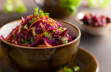 Photo pour Red cabbage, carrot, apple salad with nuts and cranberry. Coleslaw for autumn or winter season. - image libre de droit