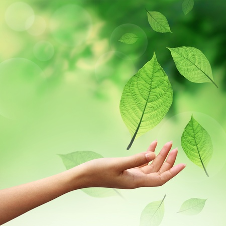 Photo for Hand with nature element leafs  - Royalty Free Image