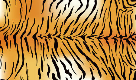 Illustration for Tiger fur texture - Royalty Free Image