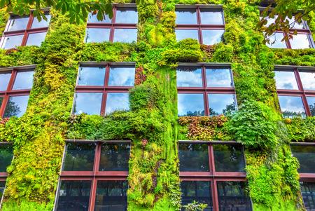 Foto de Green wall - Imagen libre de derechos