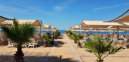 Foto de Wood alley to the sea on the beach with many umbrellas - Imagen libre de derechos
