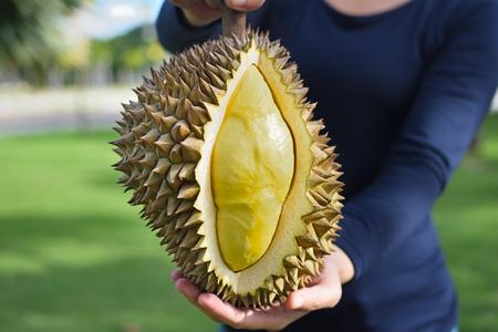 Photo pour Fruit of a ripe durian in the Fruit farmers hands - image libre de droit