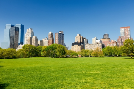 Photo for Central park at sunny day, New York - Royalty Free Image