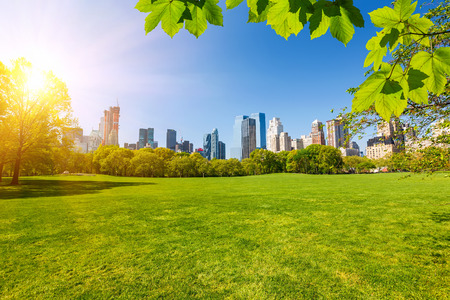 Photo pour Central park, New York - image libre de droit