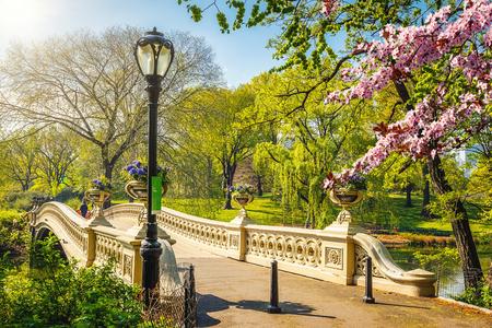 Foto de Bow bridge in Central park at spring sunny day, New York City - Imagen libre de derechos