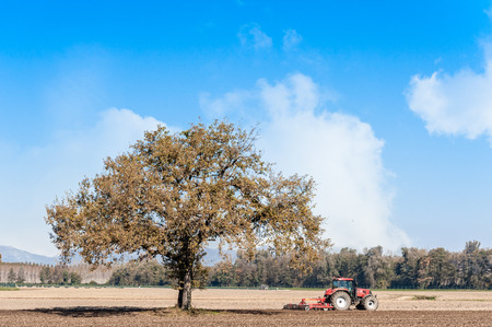 Photo pour Agricultural landscape with a tree and tractor plowing the field with harrow. - image libre de droit