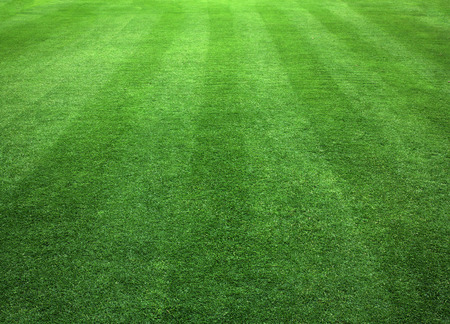 Photo pour Green Grass Lawn natural patterns background texture. - image libre de droit