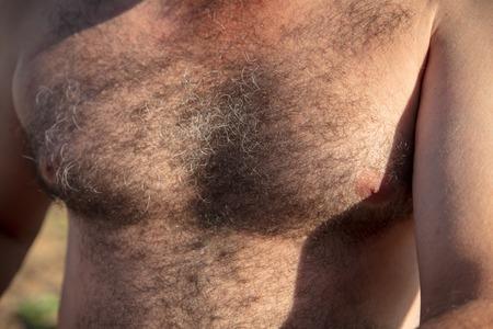 Foto de The hair grows on the chest of a man as a background . - Imagen libre de derechos