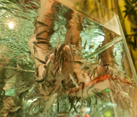 Foto de Foot cleaning with fish in the aquarium. Peeling - Imagen libre de derechos
