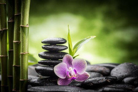Foto per zen basalt stones ,orchid and bamboo - Immagine Royalty Free