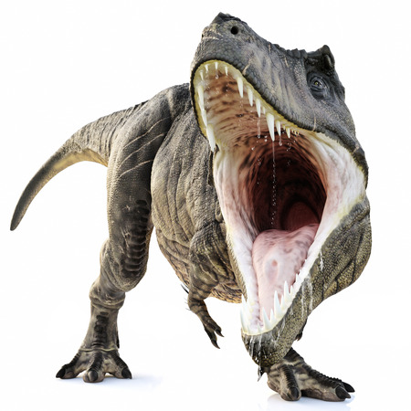 Photo pour A Tyrannosaurus Rex attack on an isolated white background . 3d rendering - image libre de droit