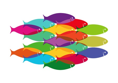 Colourful Fish Shoal
