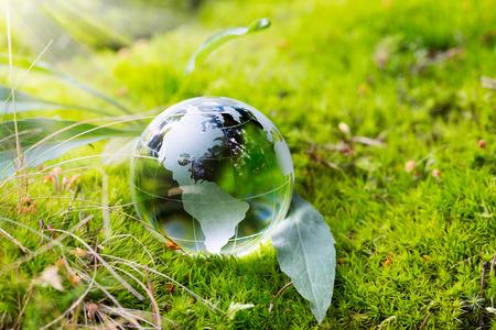 Foto de Crystal globe resting on moss in a forest. - Imagen libre de derechos
