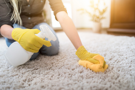 Photo for Housewife cleaning carpet with brush and doing housework. - Royalty Free Image