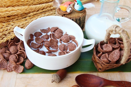 Photo for Cocoa crunch and fresh milk is delicious - Royalty Free Image
