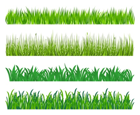 Illustration pour Green grass and field elements isolated on white background - image libre de droit