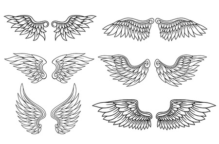 Illustration for Set of eagle or angel wings for heraldry and tattoo design - Royalty Free Image