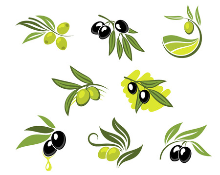 Ilustración de Green and black olives set for agriculture or food design - Imagen libre de derechos