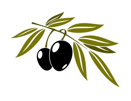 Ilustración de Black olives branch with leaf isolated on white background for cooking, gastronomy, oil and vegetarian design  - Imagen libre de derechos
