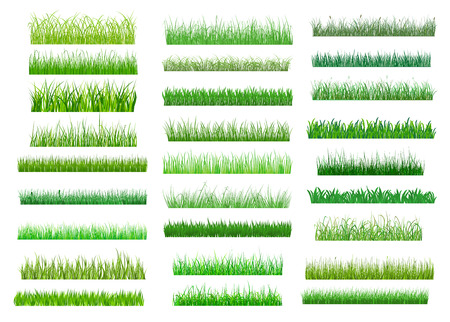 Illustration pour Large set of fresh green spring grass borders in differing shades of green lengths and densities for use as design elements on white - image libre de droit
