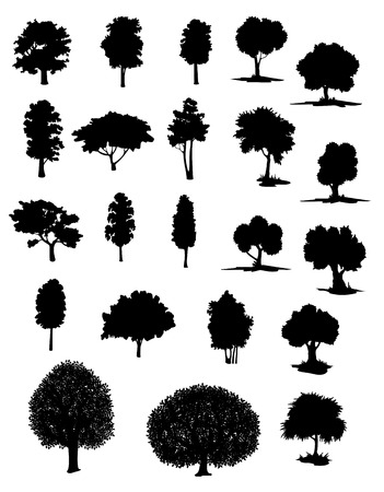 Illustration pour Silhouettes of assorted trees with leafy canopies in different shapes and sizes - image libre de droit