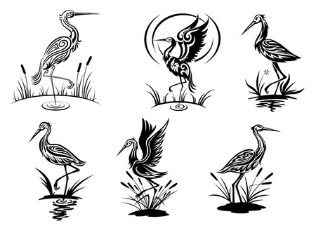 Illustration pour Stork, heron, crane and egret birds vector illustrations in black and white side view showing the birds wading in water - image libre de droit