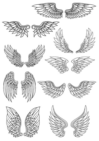 Illustration for Set of outline heraldic wings in black and white with feather detail for use in heraldry and religion design - Royalty Free Image