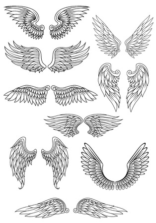 Illustration for Heraldic bird or angel wings set isolated on white for religious, tattoo or heraldry design - Royalty Free Image