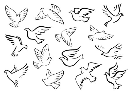 Illustration pour Pigeon and dove birds silhouettes in sketch style for peace or love concept design - image libre de droit