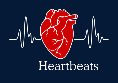 Ilustración de Health care concept depicting human heart with white wavy line of heartbeats cardiogram on dark blue background with caption Heartbeats - Imagen libre de derechos