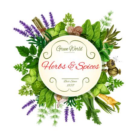 Illustration pour Fresh herbs and spices round label for food design - image libre de droit