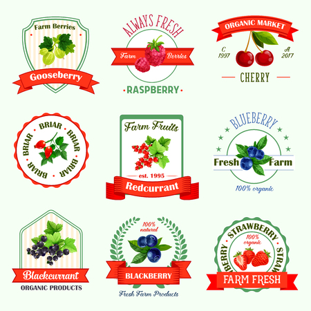 Illustration for Berries icons or berry jam or juice product labels. Vector isolated set of organic gooseberry, raspberry, cherry or fresh farm briar, redcurrant or blueberry, black currant, blackberry and strawberry - Royalty Free Image