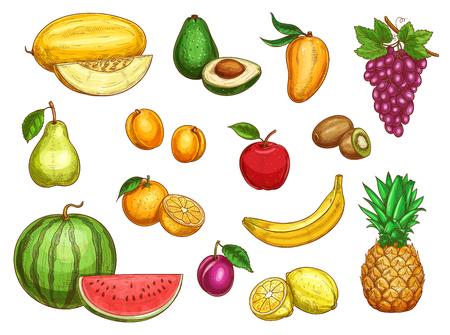 Ilustración de Vector exotic fresh fruits isolated icons set - Imagen libre de derechos