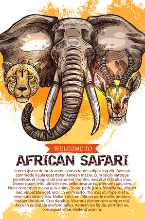 Illustration pour African safari hunting season club vector poster - image libre de droit