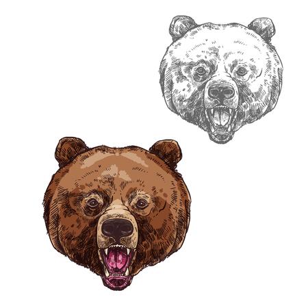 Ilustración de Bear isolated sketch with head of wild grizzly - Imagen libre de derechos