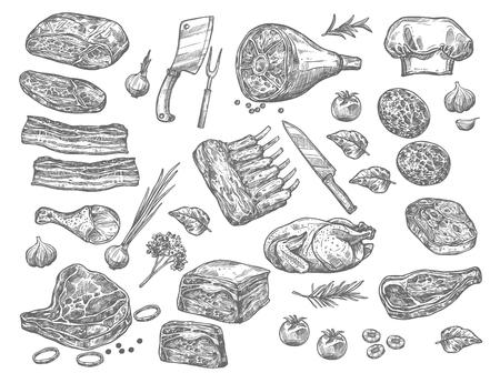 Illustration for Vector sketch icons of meat for butchery shop - Royalty Free Image