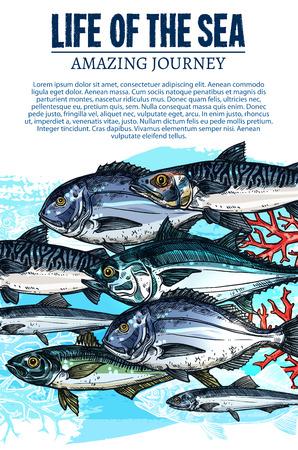 Ilustración de Vector poster of sea fish sketch ocean fishes life - Imagen libre de derechos