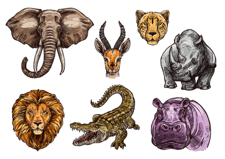 Illustration for African animal sketch set of elephant, lion, hippo - Royalty Free Image