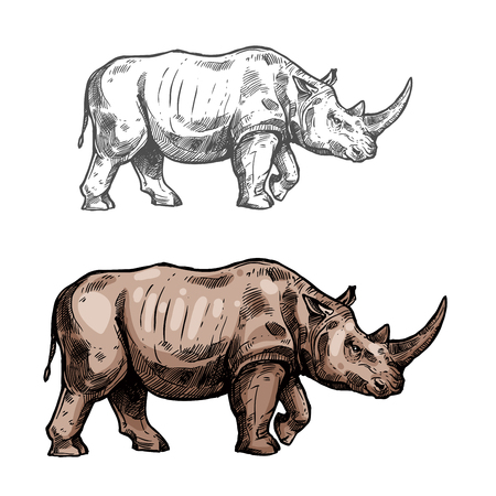 Illustration for Rhinoceros vector sketch wild animal icon - Royalty Free Image