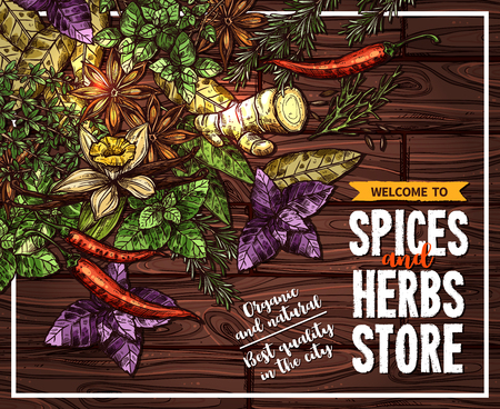 Illustration pour Spice and herb sketch poster on wooden background. - image libre de droit