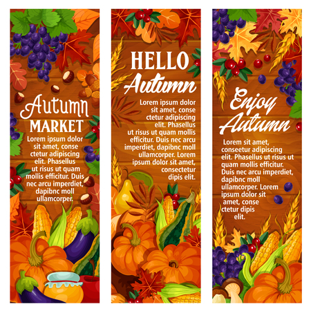 Illustration pour Autumn vector leaf fall, harvest season banners - image libre de droit