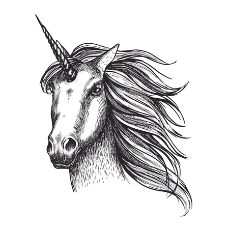 Ilustración de Unicorn horse vector sketch fairy tale animal head - Imagen libre de derechos