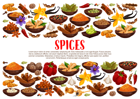 Illustration for Fragrant spices and condiments from India. Ginger and cinnamon, bay leaves and vanilla, anise star and hot chilli pepper. Piquant curry and nut meg, garlic and saffron, wasabi sauce vector - Royalty Free Image