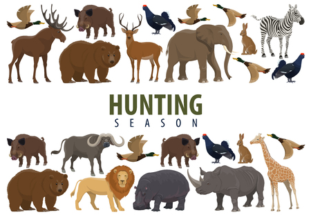Illustration for Hunting season banner with border of animal, wild forest bird and african safari mammal. Deer, duck and bear, elephant, lion and giraffe, rhino, hippo and reindeer, boar, hare and bull, zebra and elk - Royalty Free Image